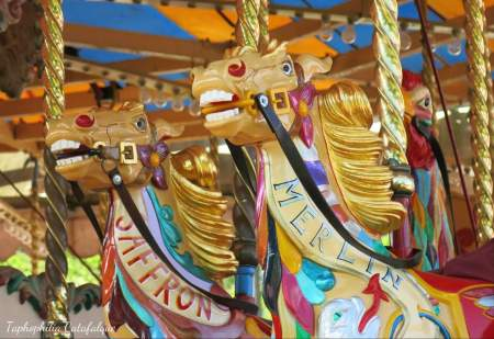 thank you to Sue Jones for this lovely images of The Steam Gallopers